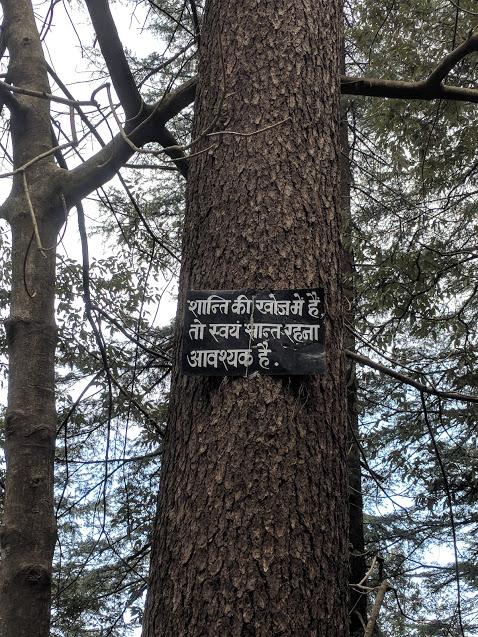 Wisdom in the Landour Hills