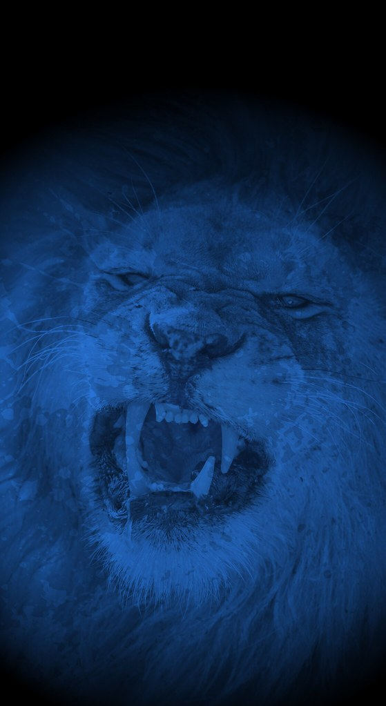 Brisbane Lions Iphone X Wallpaper Blue Splash This Wallp Flickr