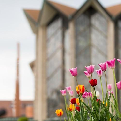 Hello Spring! #firstdayofspring #GoValpo