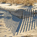 Sandfence by oshcan