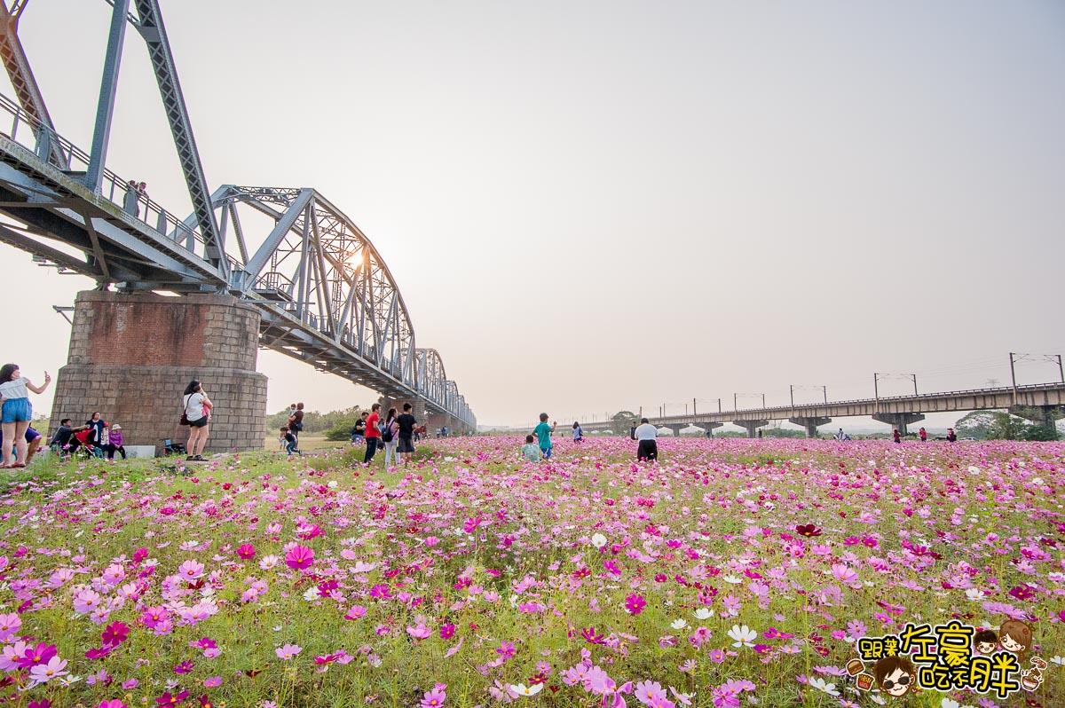 舊鐵橋(屏東端)花海-8