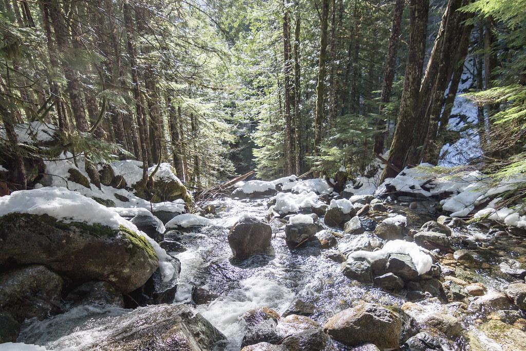 Index Creek downstream