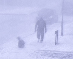 Man & dog in Hedon blizzard, East Yorkshire.