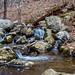 Hurd State Park Waterfall