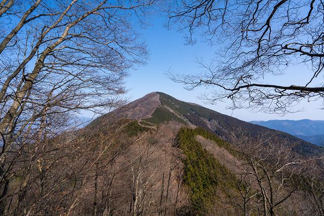 振り返り優し山容の武甲山