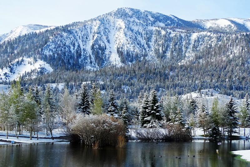 May Snow, Old Mammoth, CA 5017