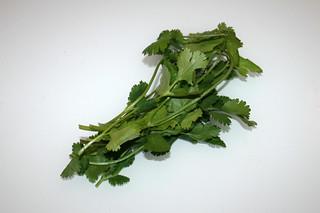 15 - Zutat Koriander / Ingredient cilantro