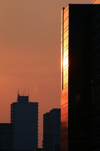 Reflecting Light (SOTC 276/365)