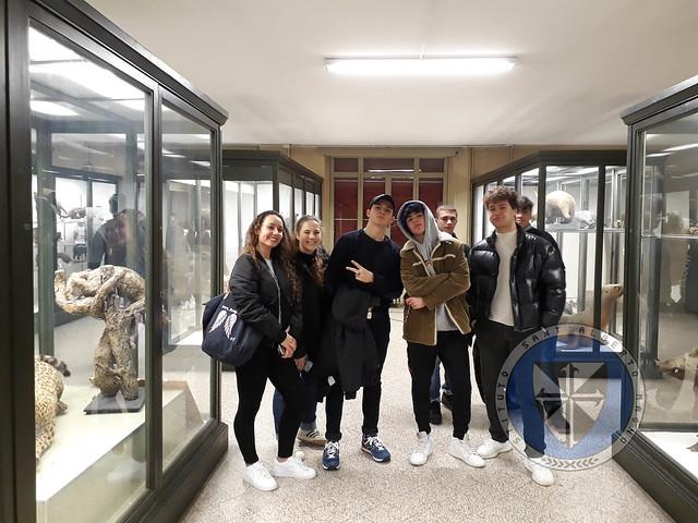 Visita Museo Zoologia