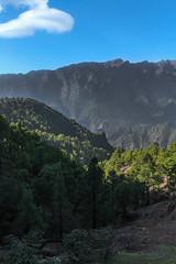Las Palmas in the mountains