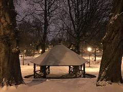 L'abris rustique sous la neige derrière deux majestueux marronniers
