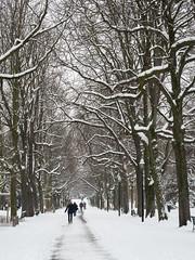 2018 mars Genève par neige