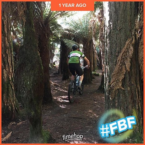 A year ago, vacationed in New Zealand. Went cycling there as well   who's have thunk it?