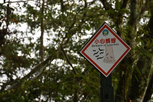 瓦拉米步道-小心螞蝗