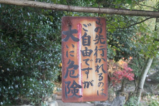 kajuji-koyo021