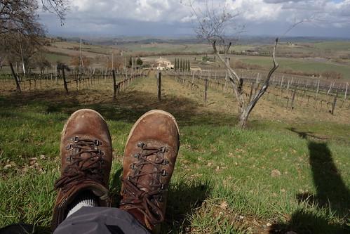 Walking to Montalcino, Tuscany, Italy