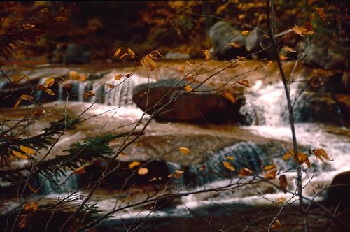 Autumn River (2)