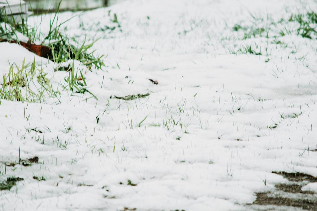 snow03242018-0864032418