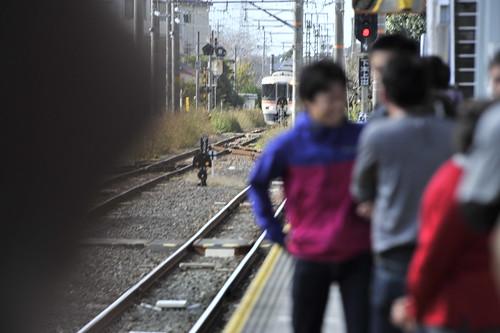 20111126-_DSC2146