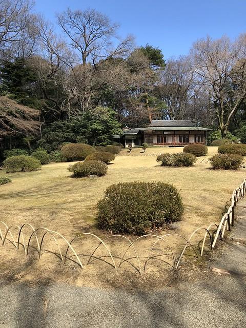 Meiji shrine teahouse from below