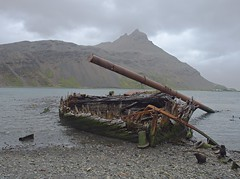 Wreck of the 'Louise'