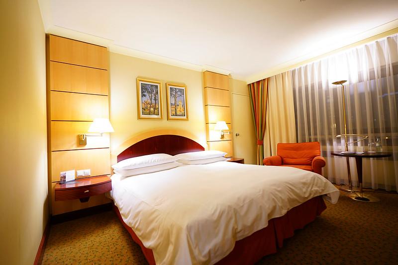 法蘭克福洲際酒店 (1)