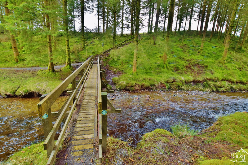Hafren Forest - River Severn trail Wales- best places to visit in Wales