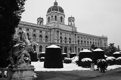 Vienna-6588