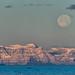 Greenland - Moonrise Over Scorebysund by Kristinn R.