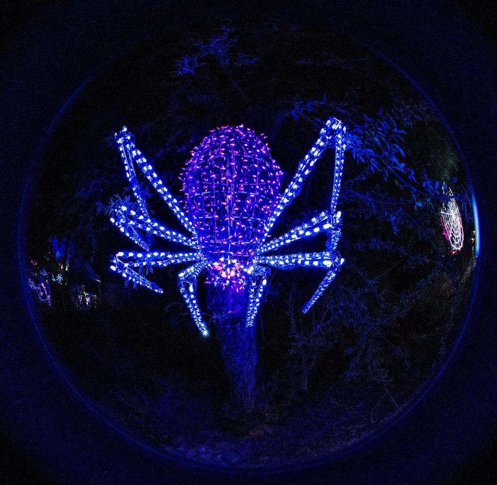 Lights_96