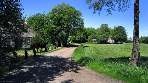 Groningen: Willemstad country road