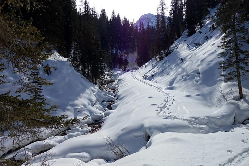 Val Larga (con le ciaspole)