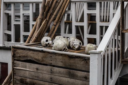 skulls in March