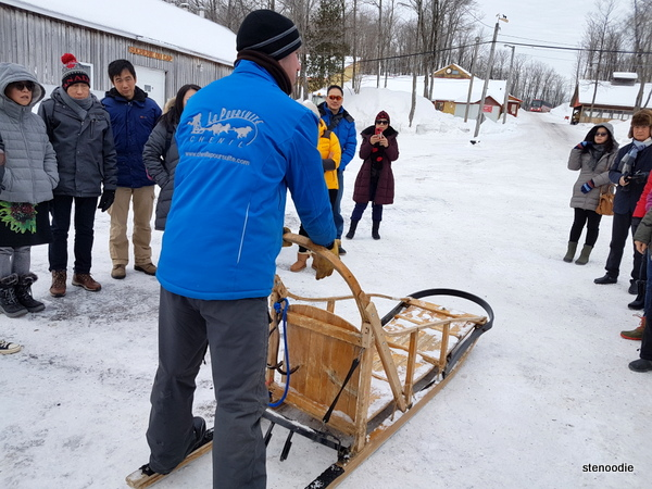 Erablière du Cap Inc. dog sledding