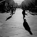Long shadows on Grey Street.