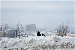 IMG_9397_ps