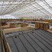 Roof over Roof - The Vyne - National Trust - Roof Replacement Project.