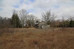 Park Log House (?) — Blendon Township, Franklin County, Ohio