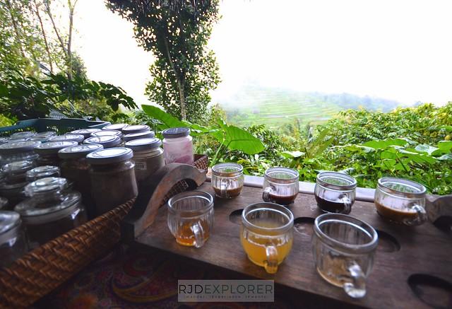bali itinerary bali coffee plantation