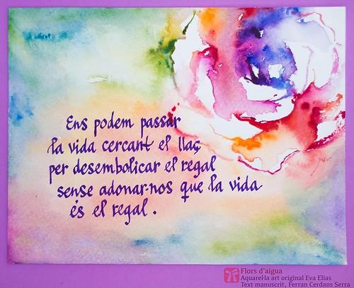 Roses de Sant Jordi. Ens podem passar la vida... Aquarel·la de l'artista Eva Elias, text manuscrit Ferran Cerdans Serra.