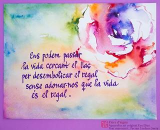 Flors d'aigua, roses de Sant Jordi. Aquarel·les de l'artista Eva Elias, amb texts propis manuscrits per l'autor, Ferran Cerdans Serra.