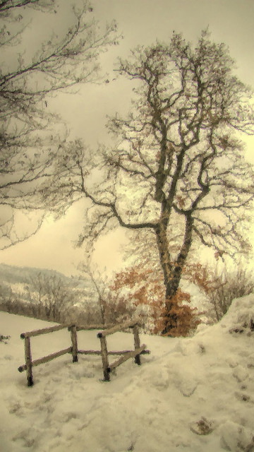 * Monghidoro: impressionism in the snow * (in Explore) *