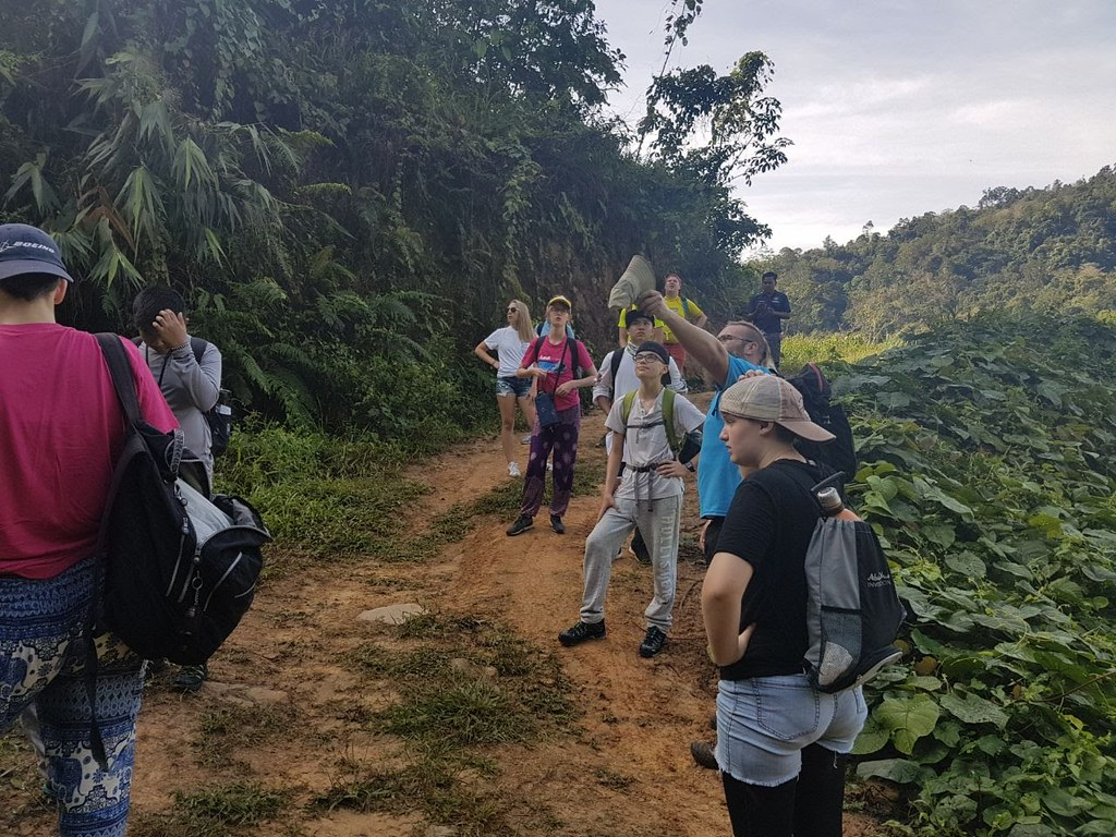 Borneo: February 2018