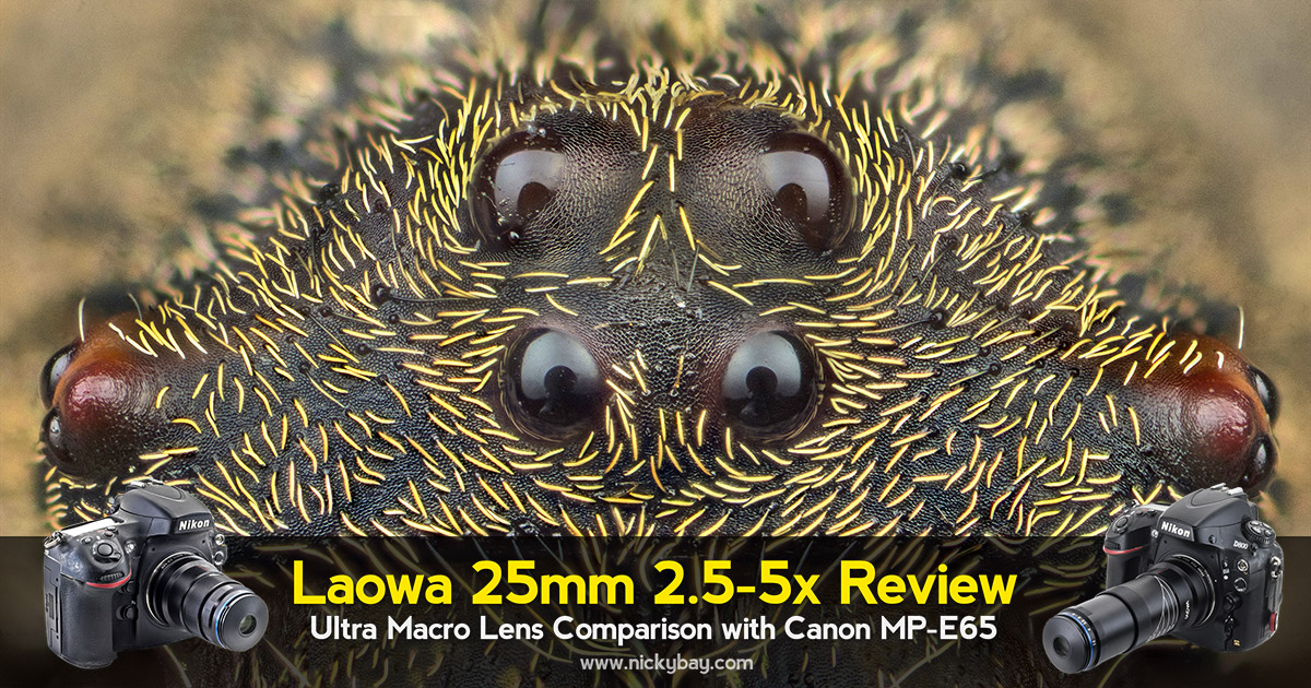 Laowa 25mm f/2.8 2.5-5X Review: Ultra Macro Lens Comparison with Canon MPE65