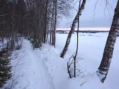 Hovskogen_0330edit
