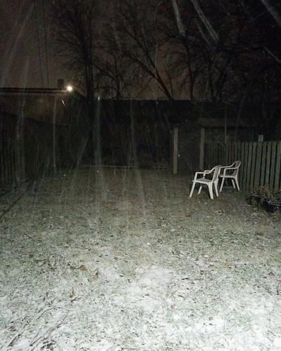 Backyard snow at night, Dovercourt Village #toronto #dovercourtvillage #night #snow #latergram #white
