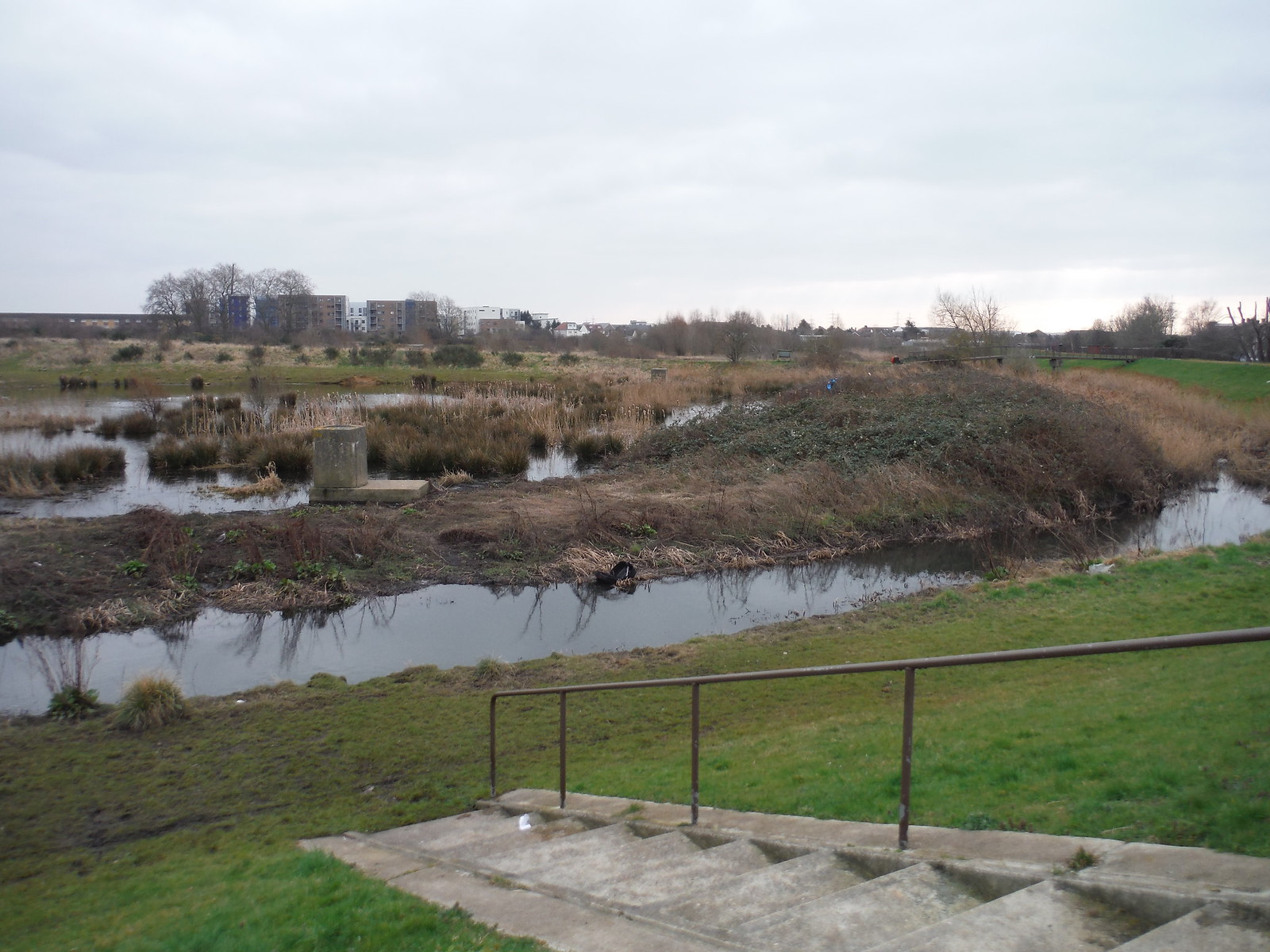Wantz Stream and Pond SWC Short Walk 33 - Dagenham Parks, Rivers and Ponds