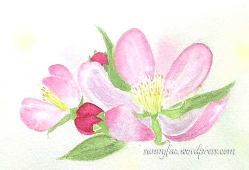 Apple blossom card watercolour