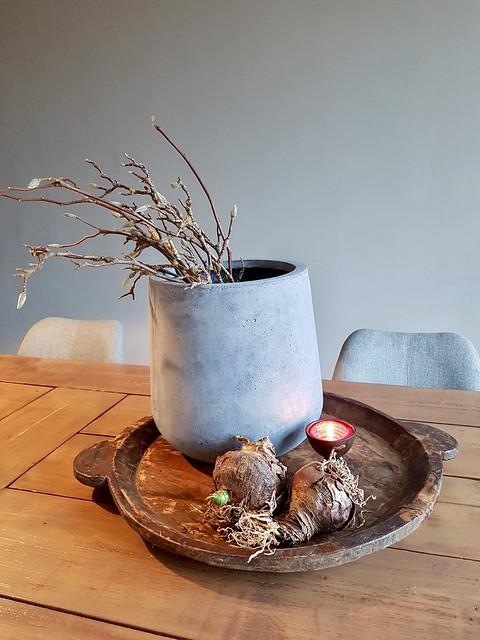 Houten schaal, Amaryllis bollen, vaas met takken