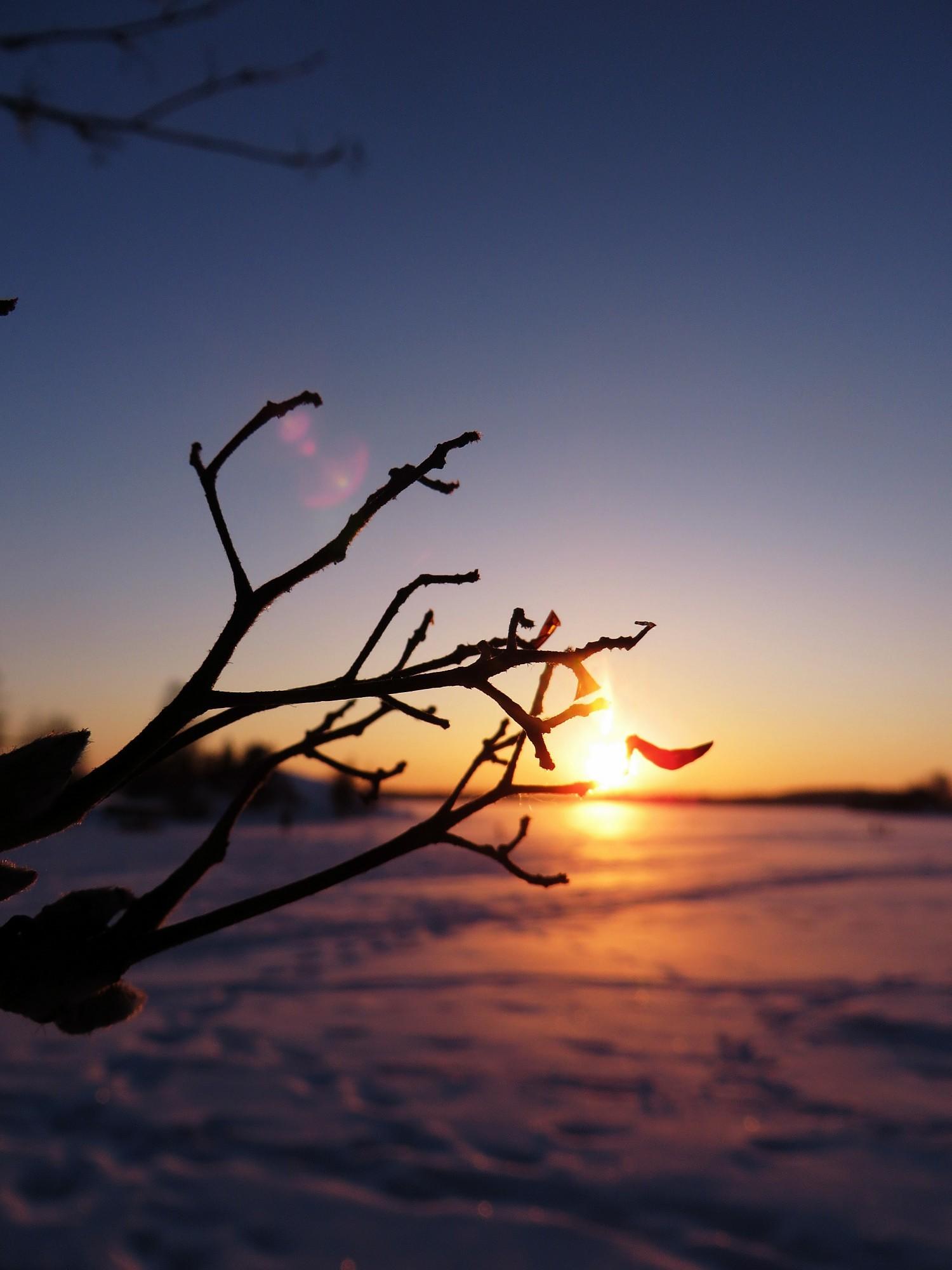 talvenkauneimmat3